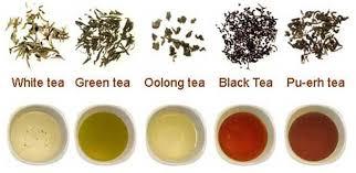Tè, i dieci tipi più diffusi